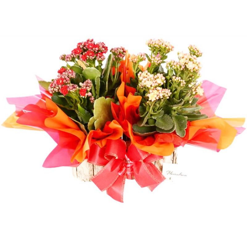 Arranjo de Flores Kalandiva