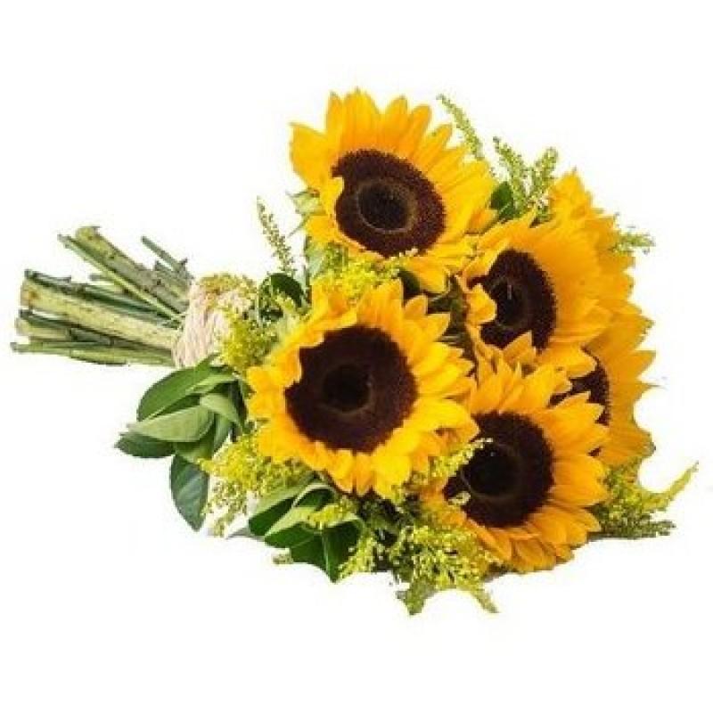 Buquê de Girassol 45cm com 6 Flores